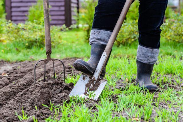 digging-in-the-garden (Demo)